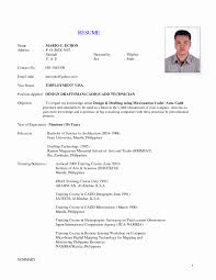 Sample Resume Format For Job Application Resume Format For Technician Best Of Implemented On The Job 24