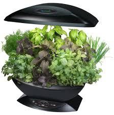 Hydroponic Kitchen Herb Garden Countertop Garden