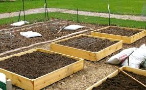 build a garden. Exellent Garden How To Build Raised Garden Beds Intended Build A Garden