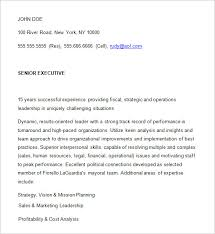 resume post ceo resume template 11 free samples examples format download