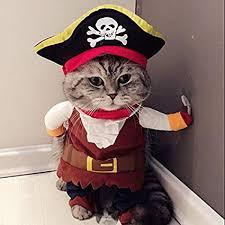 Idepet New Funny Pet Clothes Pirate Dog Cat ... - Amazon.com