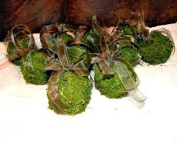 Moss Balls Wedding Decor Classy Live Moss Ball Aquatic Home Improvement Cast Wilson Charming