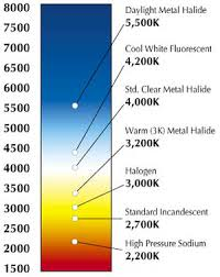Light K Chart Color Temperature What It Is And What You Need To Know