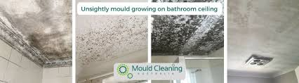 how to remove mould on bathroom ceiling