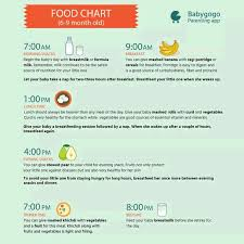 8th Month Baby Food Chart Please Send 8 Months Baby Food Chart