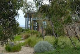 photograph portfolio of native gardens and landscapes designed and built by australian landscape designer sam garden design native