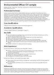 Professional Summary Resume Examples Classy Example Of Professional Summary For Resume Professional Summary