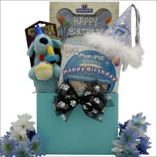 happy birthday charming boy pet dog gift basket
