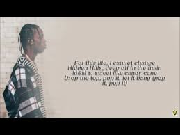 Travis Scott Quotes Adorable Funny Travis Scott Quotes Best Of Travis Scott Butterfly Effect