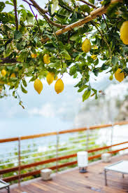 Hotel Green Lemon Casa Angelina Lifestyle Hotel Praiano The Taste Sf