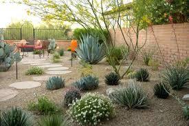desert landscaping backyard desert landscape design ideas desert backyard  landscaping ideas