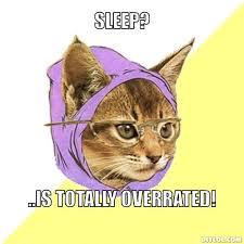 Hipster Kitty Meme Generator - DIY LOL via Relatably.com
