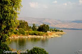 Resultado de imagem para imagens da terra santa de israel
