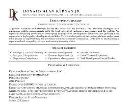 Summary Of Qualifications Resume Stunning Summary Of Qualifications Examples For Resume Keni