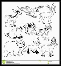 Elegante Disegni Da Colorare E Stampare Di Animali Domestici Con