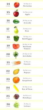 28 Judicious Fruit Chart For Pregnancy