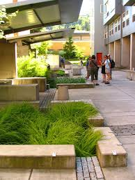 Small Picture 153 best Stormwater General images on Pinterest Rain garden