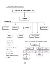 First Microfinance Internship Report 2017