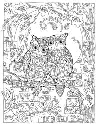 e99011ad8936fd381a3c7cc69a40ad8b creative haven owls colouring book by marjorie sarnat ~ paisley on creative coloring birds