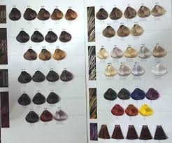 Maxima Hair Color Chart Uk Seller 15 99 Picclick Uk