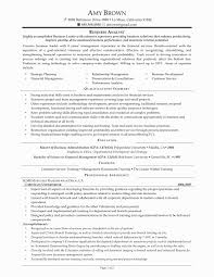 39 Inspirational Sample Business Analyst Resume Awesome Resume