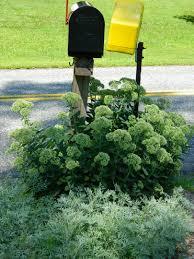 landscaping around mailbox post. Behind Landscaping Around Mailbox Post