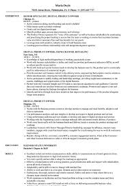 Agile Product Owner Resume Examples Digital Product Owner Resume Samples Velvet Jobs 6