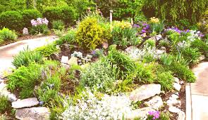 exterior ont design ideas rock garden designs front yard full size home