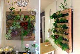 pallet wall hanging planters close to