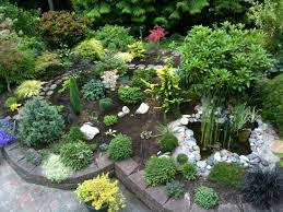 Small Picture 152 best Conifer Garden images on Pinterest Landscaping ideas