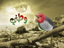 لوحات رمزية لفلسطين Images?q=tbn:ANd9GcTepRZUN68N4x0xSp0WJXk-201WAqAC0kRNoHd1tZKuwPs2hQzGOw
