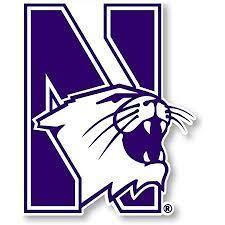 Amazon.com: Northwestern University Wildcats Sports Team Jumbo Mascot Vinyl  Decal Sticker : Sports & Outdoors