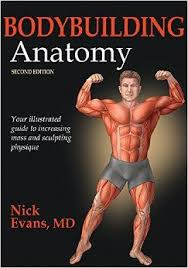 Bodybuilding Exercises Chart Free Download Pdf Bodybuilding Anatomy 2nd Edition Pdf Bodybuilding Anatomy