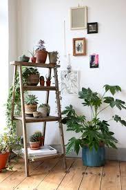 Furniture: Rustic Ladder Photo Rack Ideas - DIY Ladder