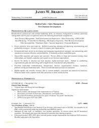 Resume For Sales Executive Job Or Sample Financial Reporting Manager