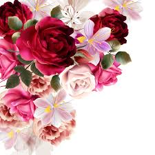 flower rose flower bouquet pink plant png image with transpa background free