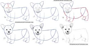 puppy drawing step by step. Interesting Step Learn How To Draw A Corgi Puppy Simple Steps  Dogs And Puppies Intended Drawing Step By U