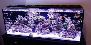 cur usa orbit marine pro marine reef led lighting system