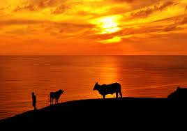 In Photos: The Stunning Sunset Of Basco, Batanes - Choose ...