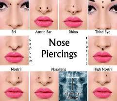All Face Piercings Chart Face Piercing Chart Septum Piercing