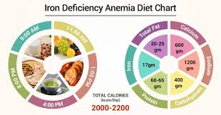 Diet Chart For Iron Deficiency Anemia Patient Iron