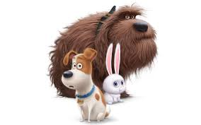 20 the secret life of pets hd wallpapers backgrounds wallpaper