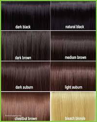 Cinnamon Hair Color Chart