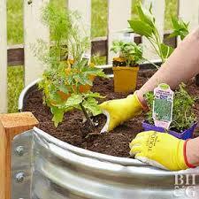 container garden plans. container garden plans