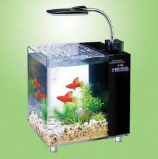 office aquarium. beautiful aquarium image is loading hidomaquariumfishtank10and15litre with office aquarium n