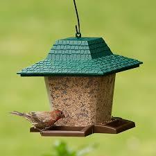 perky pet garden lantern wild bird seed feeder