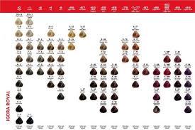 Igora Royal Color Chart 1 Cendre Silver Ash 2 Ash