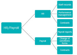 Hr Payroll Process Flow Chart Process Optimisation And Data Efficiency In Schools Octavo