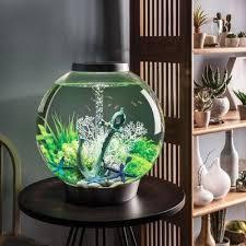 hemington fish bubble deluxe acrylic