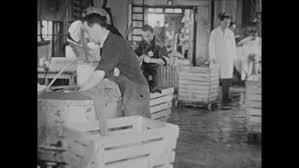black man washing clothes. Delighful Black CIRCA 1940sJewish Women Iron And Fold Clothing Material Jewish Men  Wash The Process Of Washing  For Black Man Clothes 2